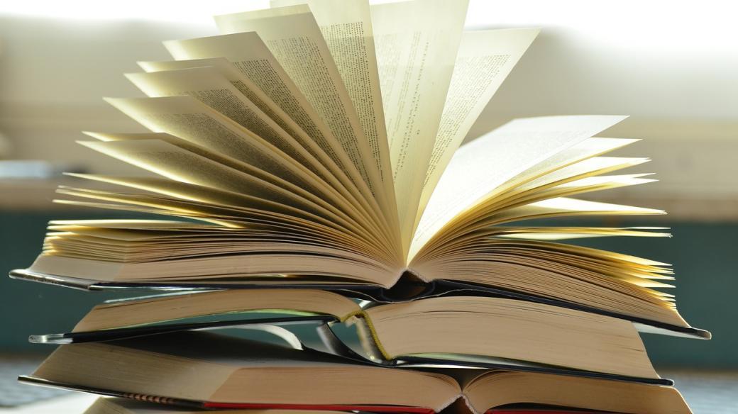 O knihách s knihovnicí