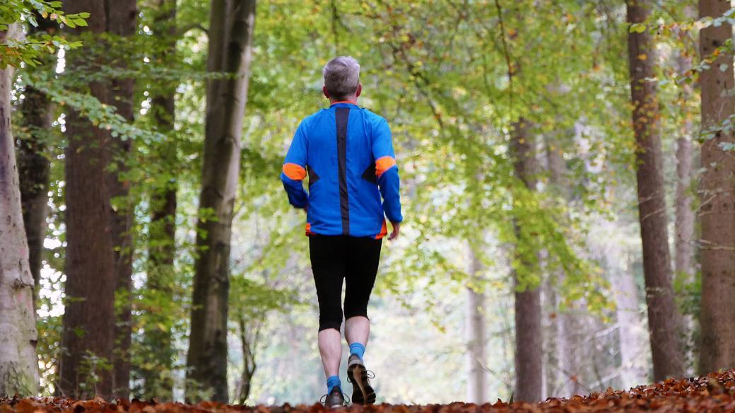 Běh v lese (ilustrační foto)