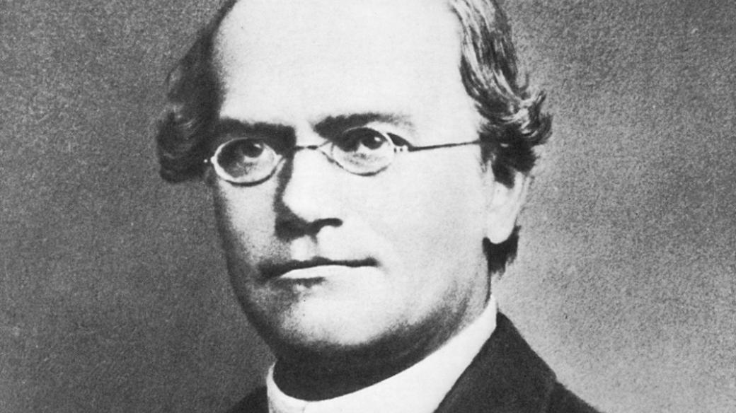 Zakladatel genetiky Gregor Johann Mendel