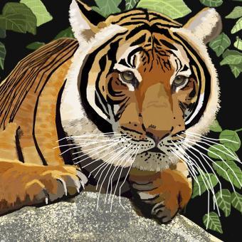 Věrná tygřice Jiskra