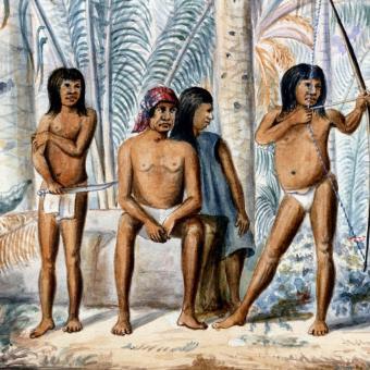Manuel María Paz (1820–1902): Indiáni kmene Guahibo