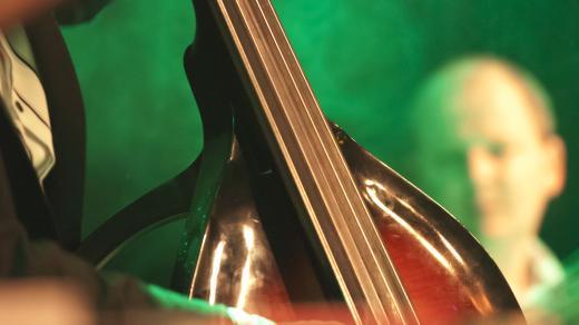Basista - ilustrační foto