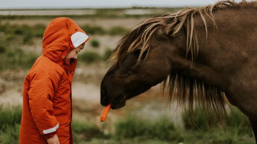 dítě - dítě a kůň