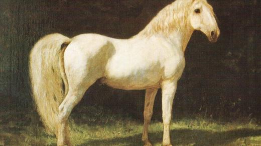 Victor v. Eckhardt: Starokladrubský kůň Generale Alba XIII.